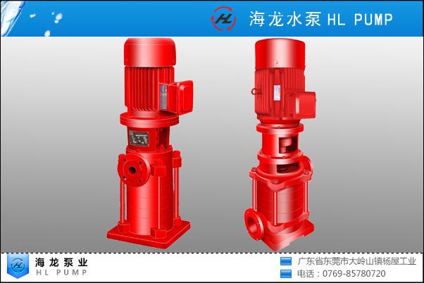 海龙牌立式多管道泵结构图